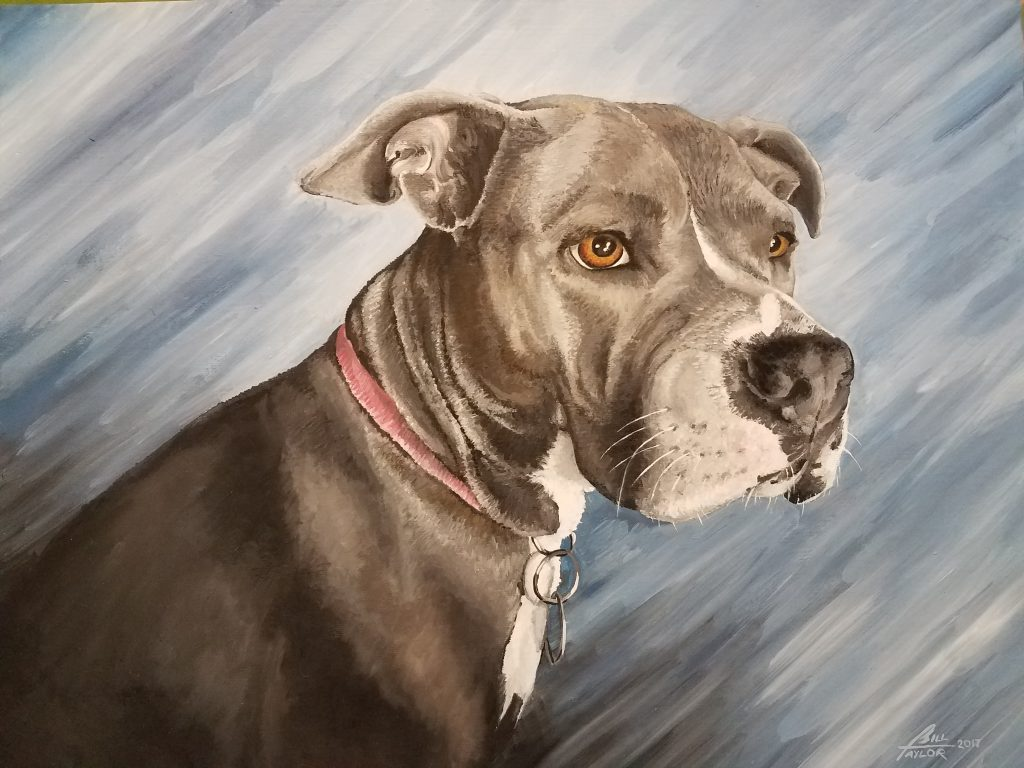 Pit-bull oil portrait